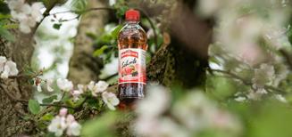 Nouveau Schorle saisonnier RAMSEIER pomme et baies d'été