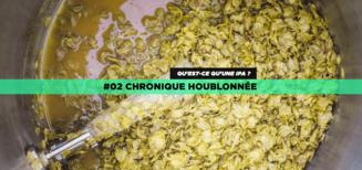 #02 Chronique houblonnée • Qu'est-ce qu'une IPA ?