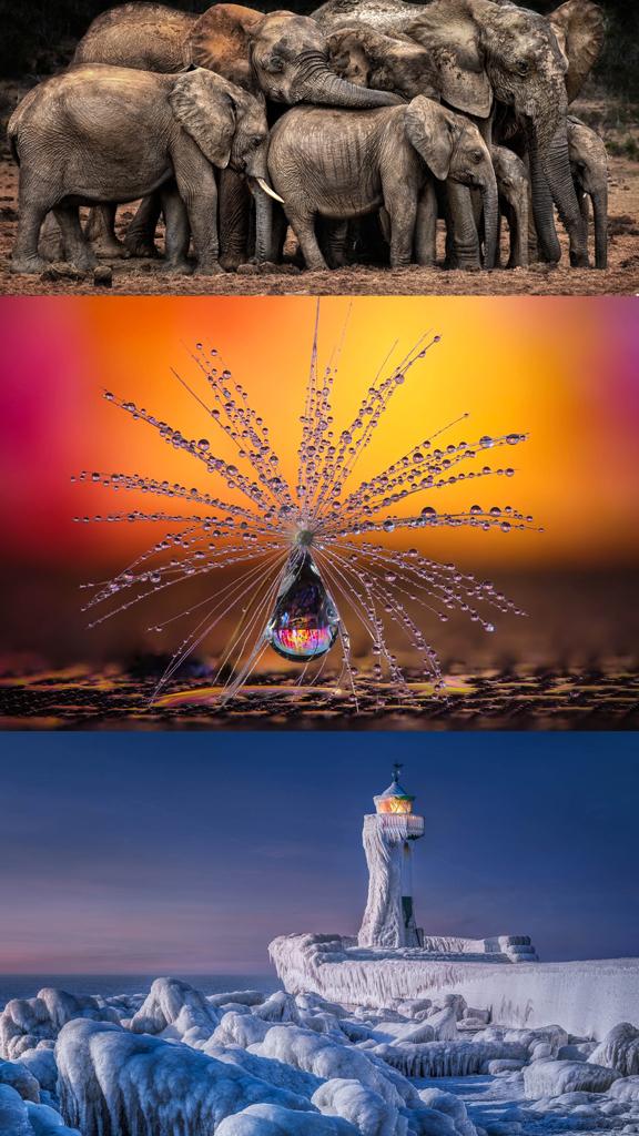 Une Suissesse remporte une des catégories du CEWE Photo Award